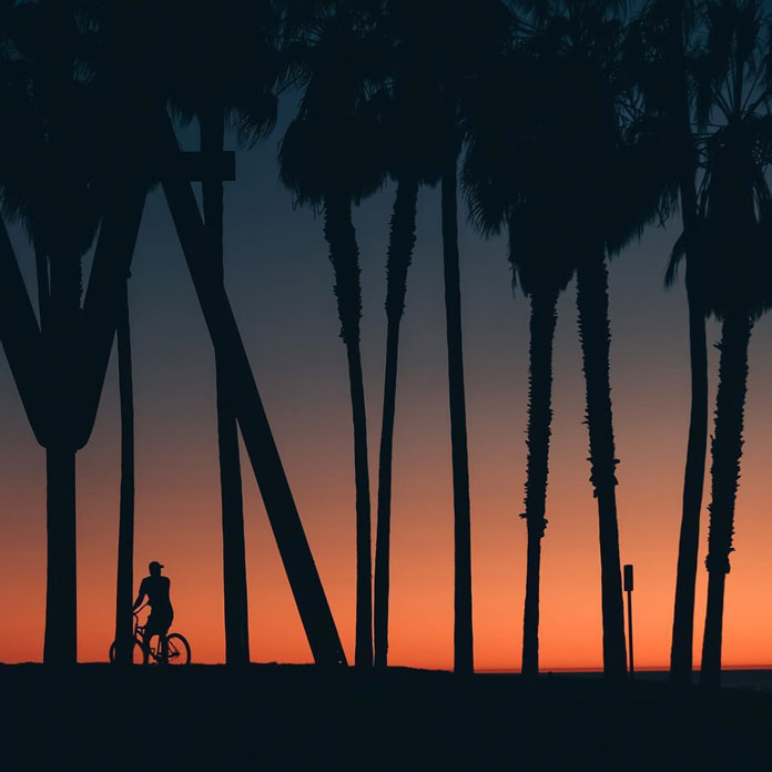 Where the Mild Things Are, the sunset at Venice Beach forms a nice silhouette.