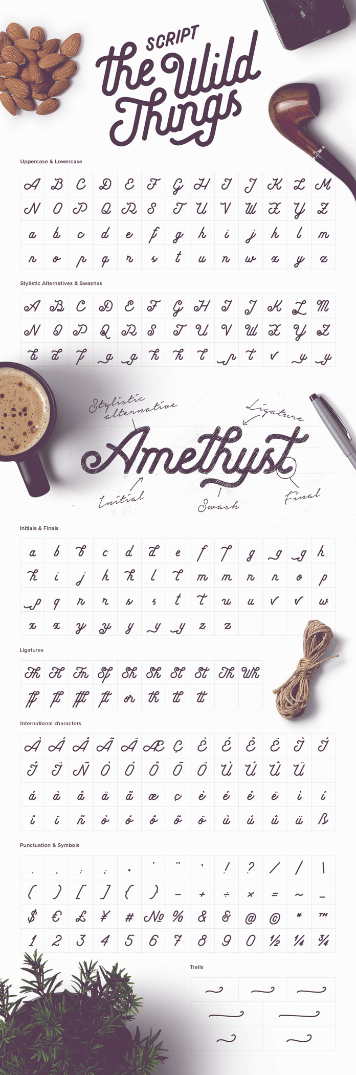 An overview of the Script typeface with all uppercases and lowercases, stylistic alternatives and swashes, initials and finals, ligatures, international characters, punctuation and symbols, trails.