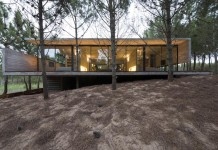 Modern concrete house in a pine forest.