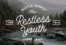 The Restless Youth fonts bundle comprises 4 font files and 3 different type styles.