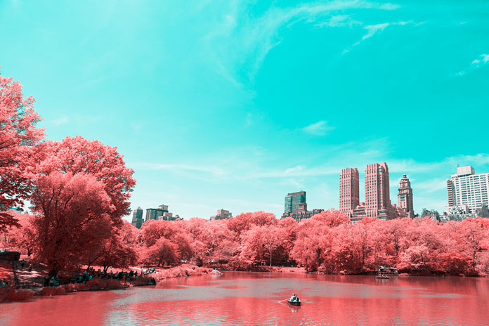 The infrared effect turns the park into a surreal setting.
