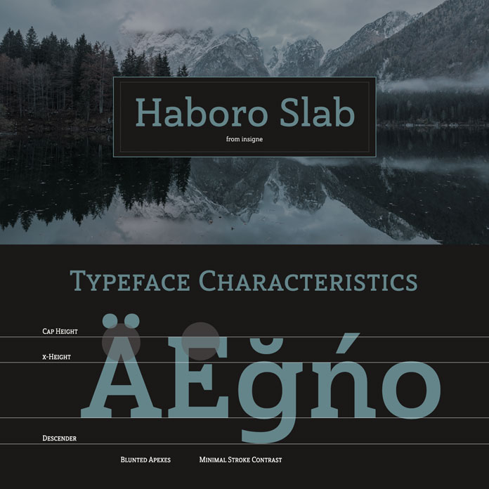 Haboro Slab, a family from foundry Insigne with 54 fonts in 3 widths and 7 weights.