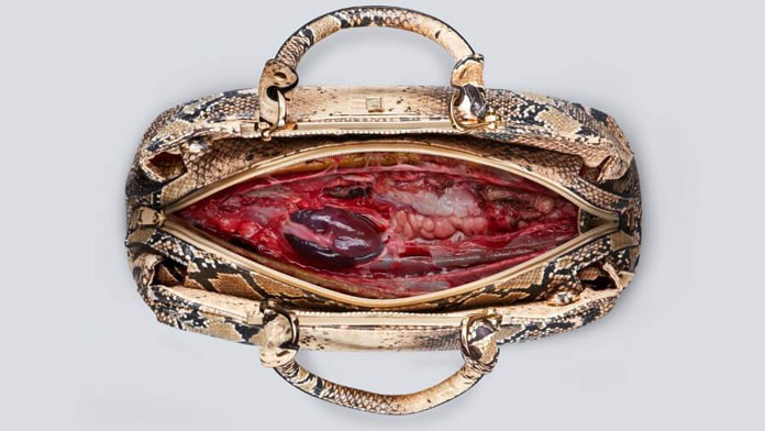 Snake leather bag with a beating heart inside – shocking PeTA campaign.