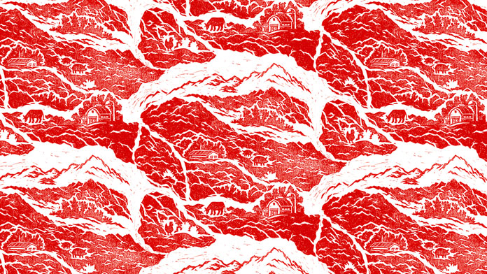 The grain of the meat transformed into a landscape illustration.
