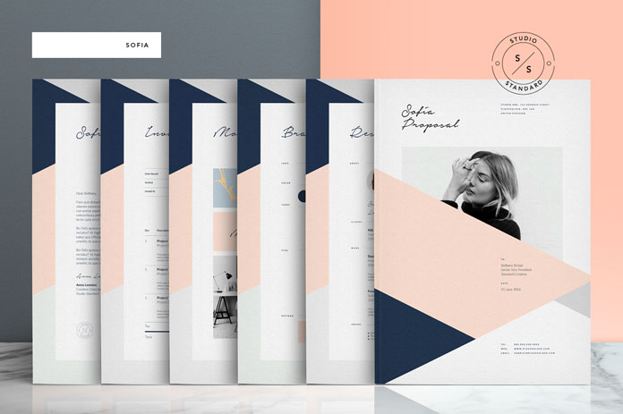 Sofia pitch pack template for adobe indesign for Adobe brochure templates