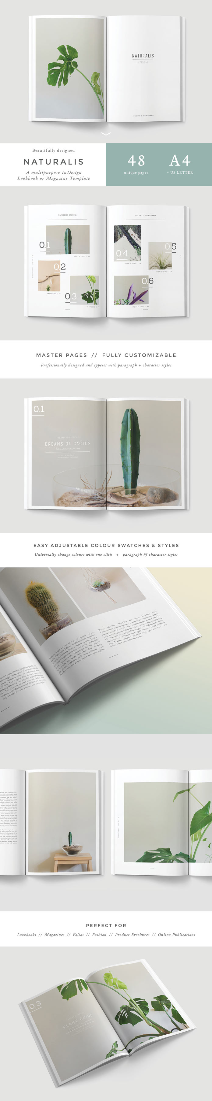 Adobe indesign template for lookbooks and magazines for Adobe indesign magazine templates free download