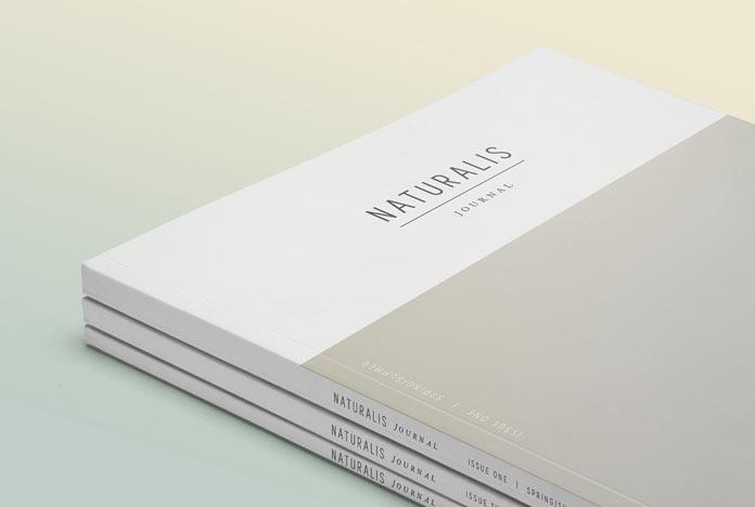 Modern design brochure design.