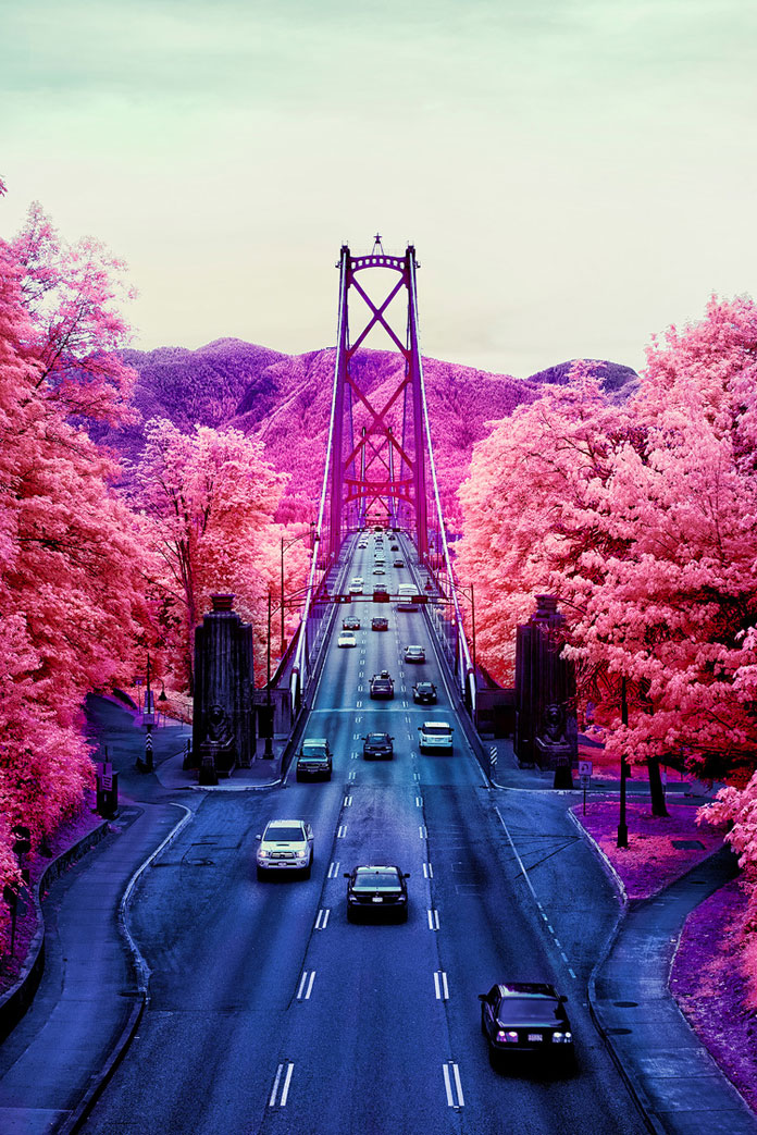 Aerochrome infrared photography of Lions Gate Bridge.
