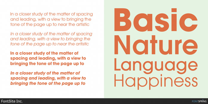 A sturdy geometric typeface.