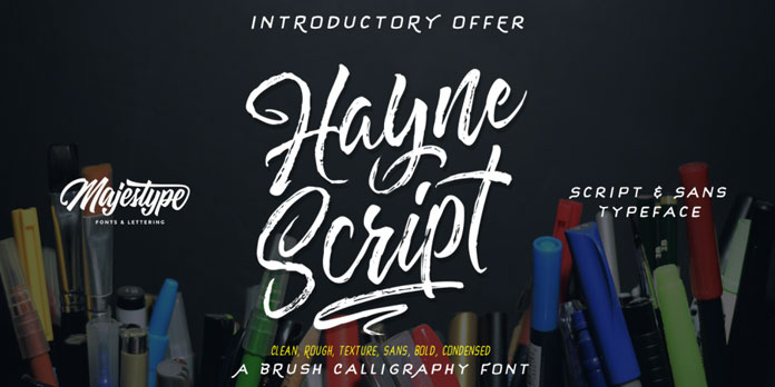 Hayne, a brush script and display sans font family designed by Dexsar Harry Anugrah.