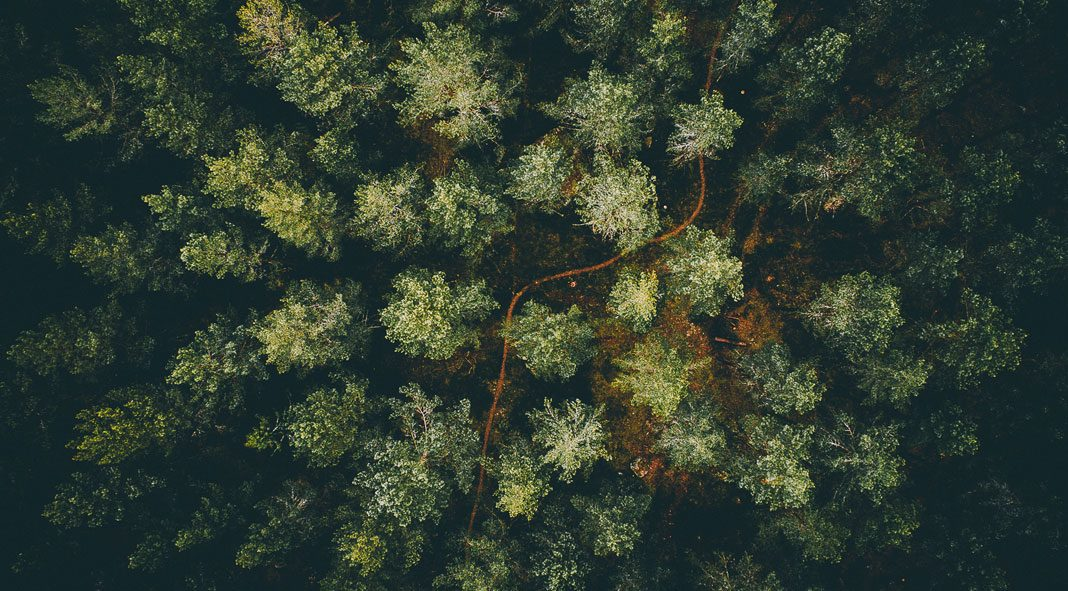 Nature aerial photography by Tobias Hägg