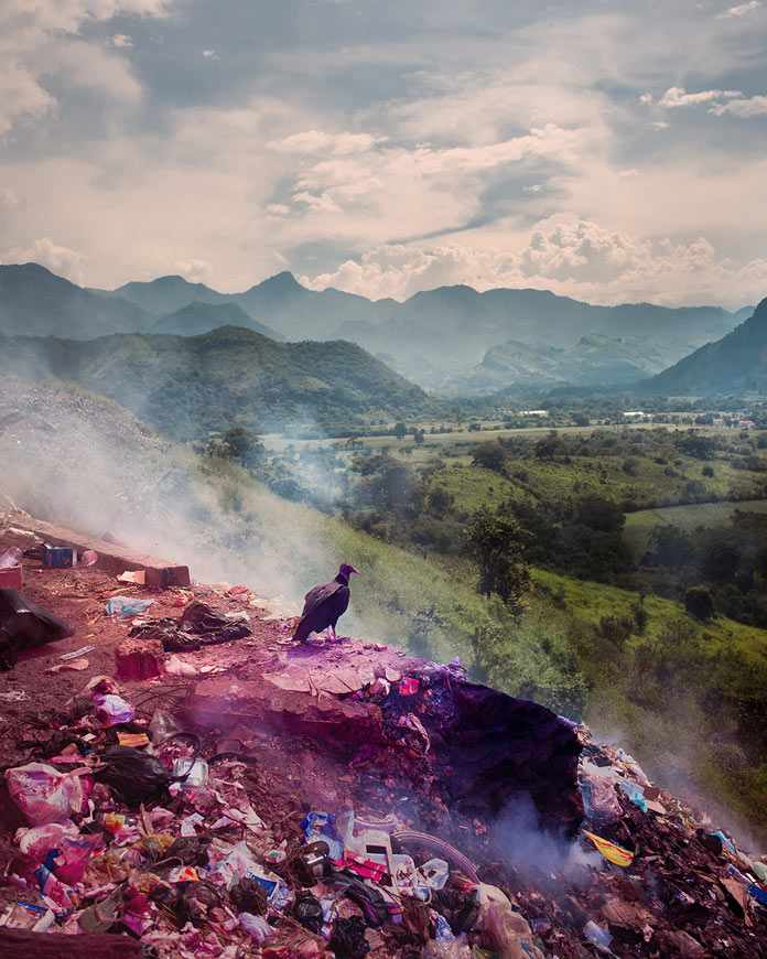 """A vulture breathes the fresh morning air"", Chiapas, Mexico, 2016."