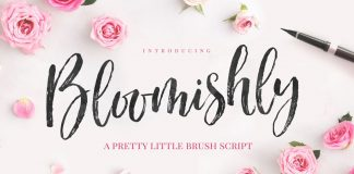 Bloomishly brush script typeface by Nicky Laatz.