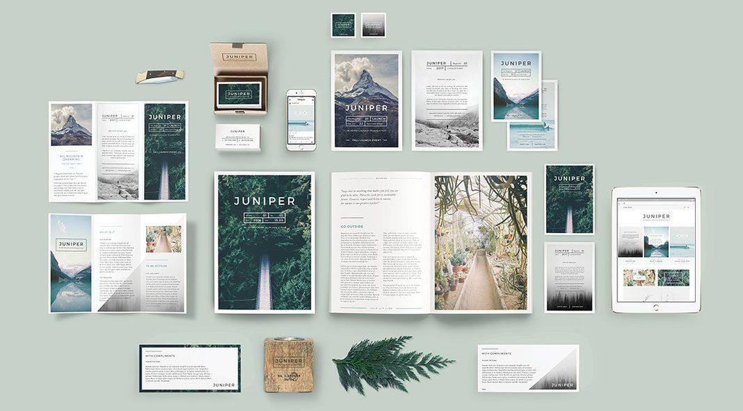 Juniper branding bundle from 46&2 Collective.