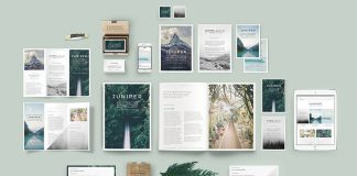 Juniper branding bundle from 46&2 Collective.