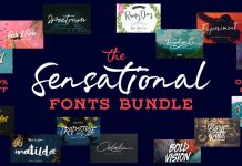 Sensational Fonts Bundle.