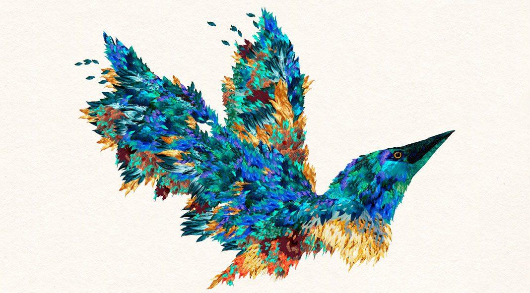 Elisa Vendramin Illustrations