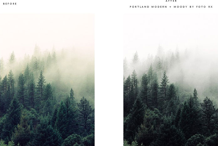 Foggy forest - before and after