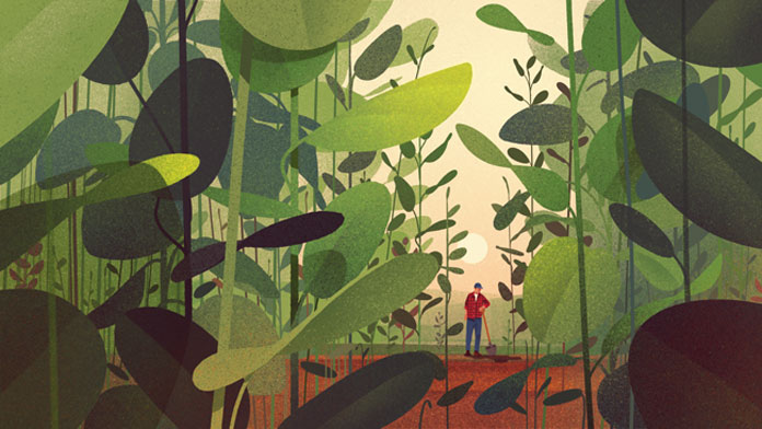 Karolis Strautniekas, Illustration for Crop Nutrition, commissioned by Modern Climate.