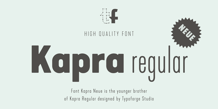 Kapra Neue, The younger sister of the Kapra typeface.
