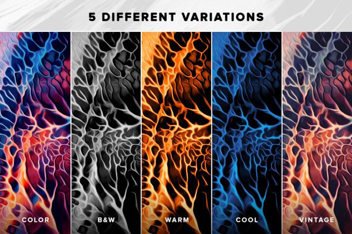5 different variants.