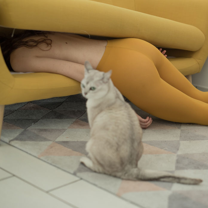 Giuseppe Palmisano Photography, The cat's confusion