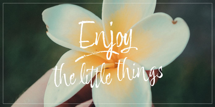 Enjoy the little things and details.