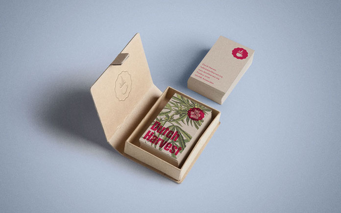 Dutch Harvest Hemp Tea, Cardboard box with business cards.