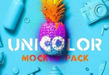 Unicolor Scene Mockup Pack from Mockup Zone
