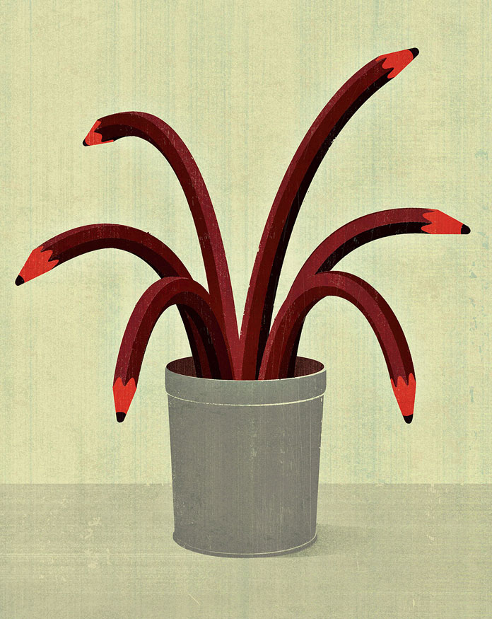 Joey Guidone, a pencil plant.