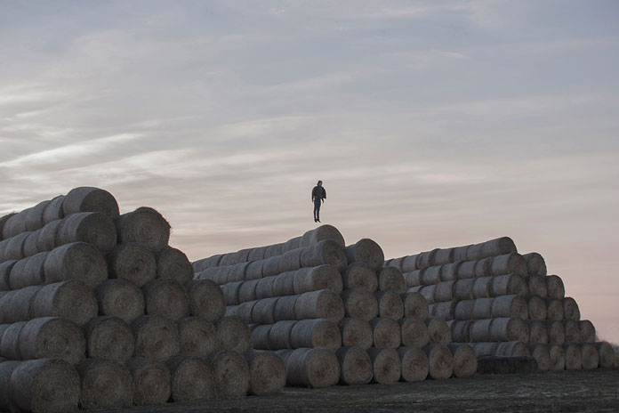 On His Own – photo series by Pawel Franik, hovering over the straw bales
