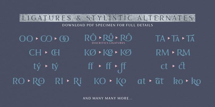 Ligatures and stylistic alternates.