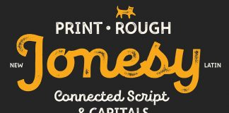 New Jonesy Latin – font family by Ksenia Belobrova.