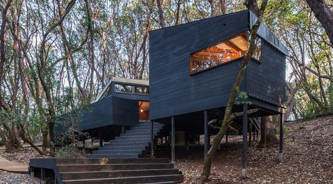 forest house architecture forest house by envelope architecture design 291