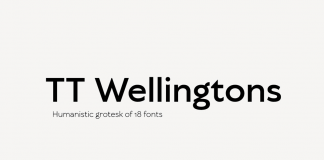 TT Wellingtons font family from TypeType