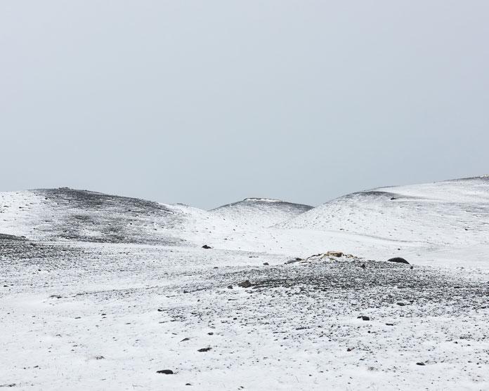 Balint Alovits Photography, Iceland's frozen expanses.