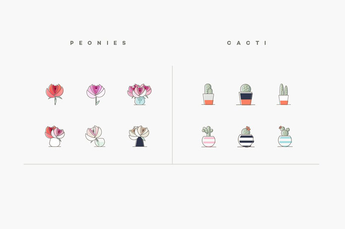 Peonies and cacti