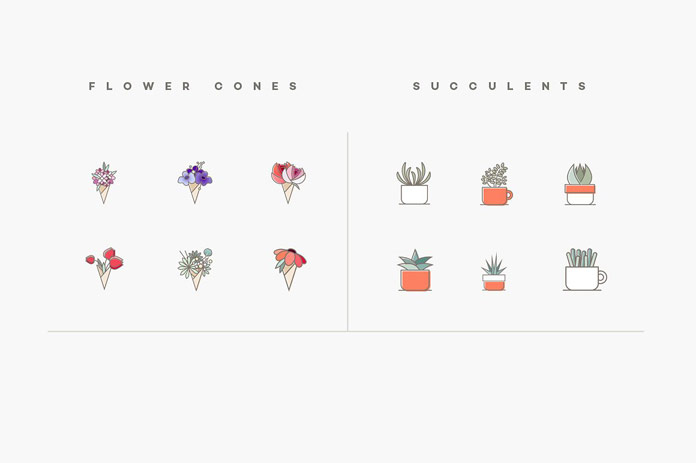 Flower cones and succulents