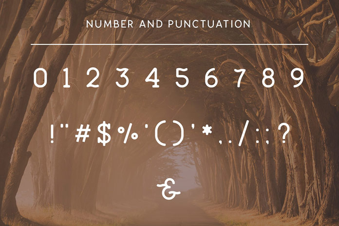 Numbers and punctuation.