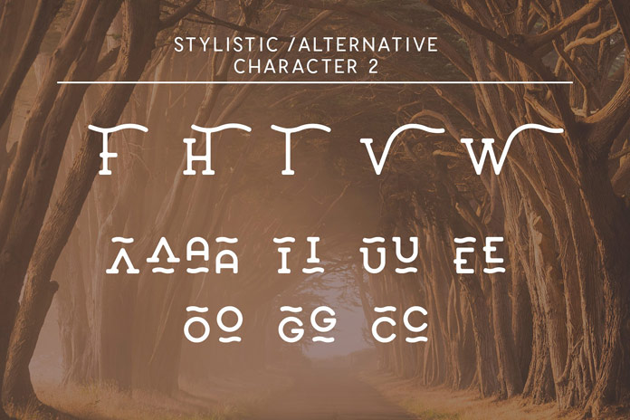 Stylistic alternates set 2.