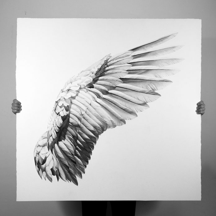 black ink pen drawings by alessandro paglia