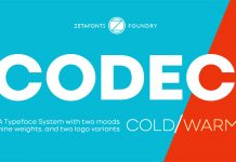 Codec font family from Zetafonts.