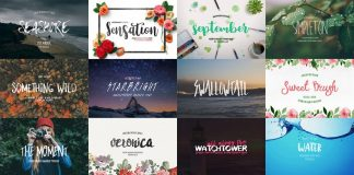Download professional fonts with extended license