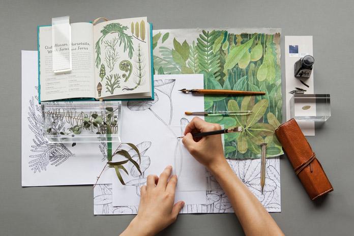 Hand-drawn plants.