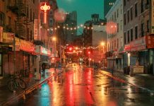 Chinatown, New York City by Ludwig Favre.