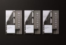 Gmund Bauhaus Swatchbook by Tolleson Design