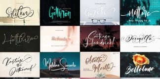 Modern Fonts Bundle from Pixelo