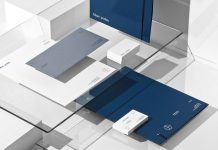Graphic design and branding by Sabbath Studio for financial company Blue Palm