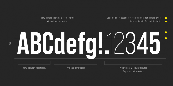 Bebas Neue Pro font family from Dharma Type