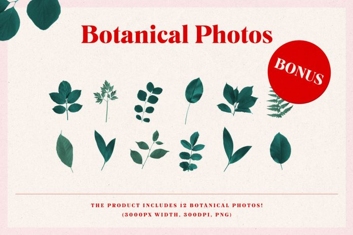 The product includes 12 botanical images as a little bonus.